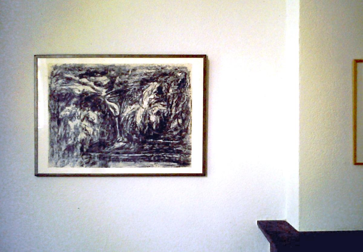Jasper Daams - Rotterdam Art Space